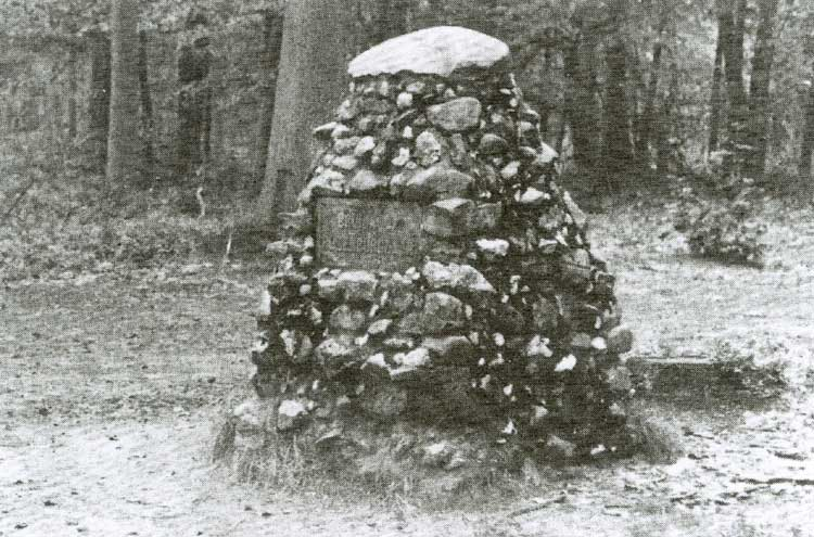 Bruijn van Rozenburgzuil.